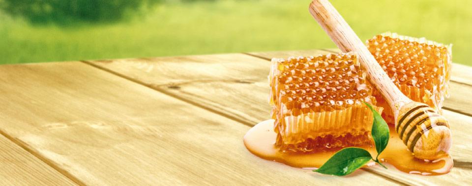 Pura Esperança Honey